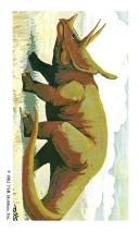 Set-1-Triceratops