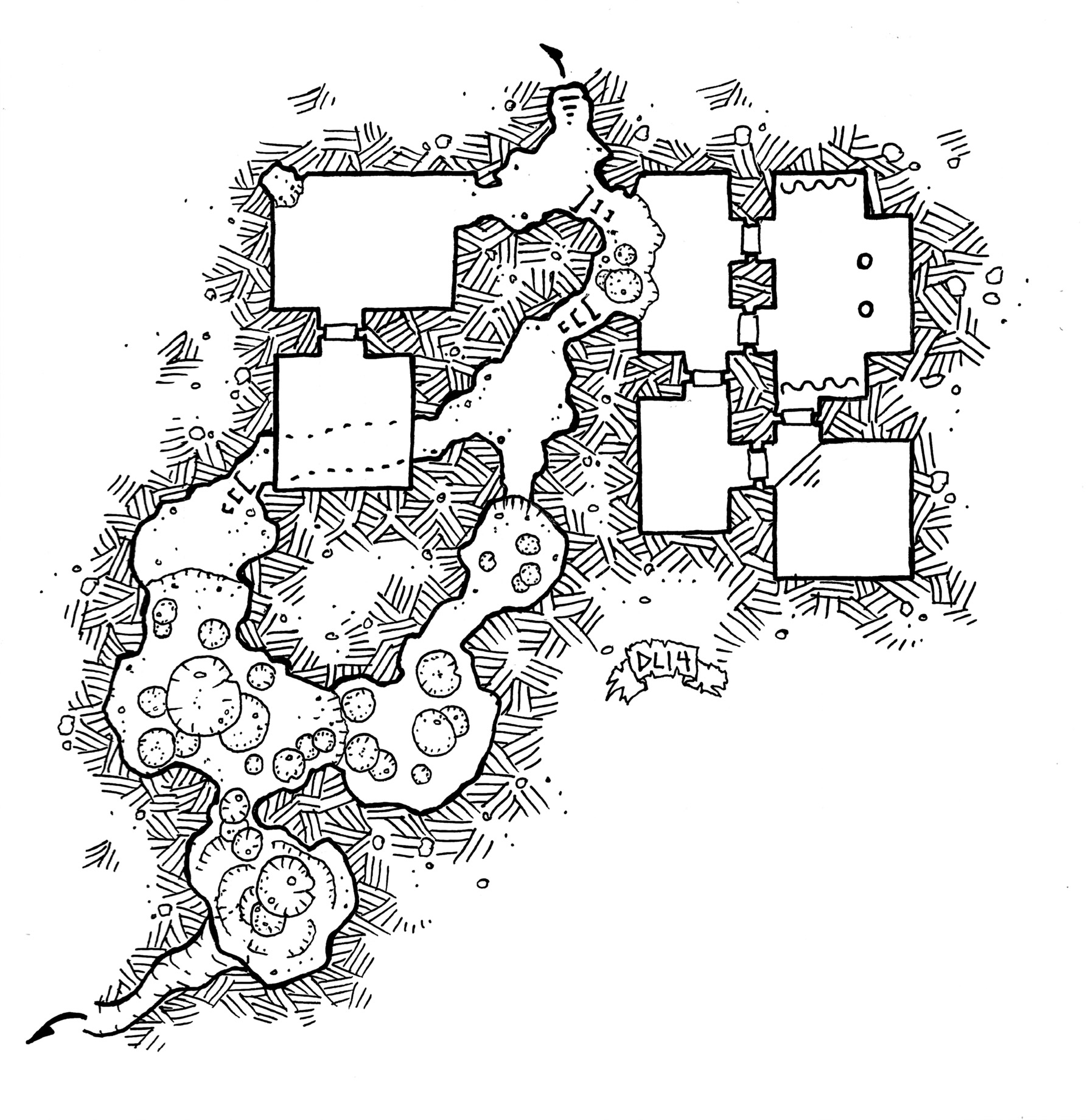 friday map  under the mushroom cavern