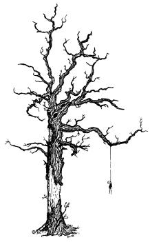 039 - Hanging Tree 150