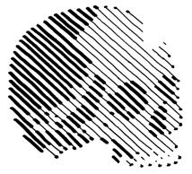 060 - Skull Variations 6 150