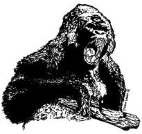 066 - Desert Ape 150