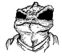 096 - Mr Lizard 150